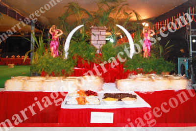 vegetarian caterers in hyderabad